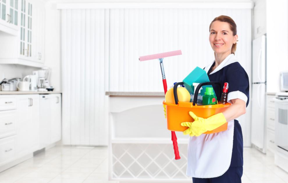 D a de las trabajadoras del hogar vive tu empresa - Electronica del hogar ...